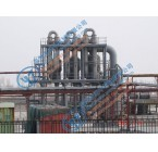 葡萄糖酸钠蒸发结晶器